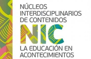nic31_crop